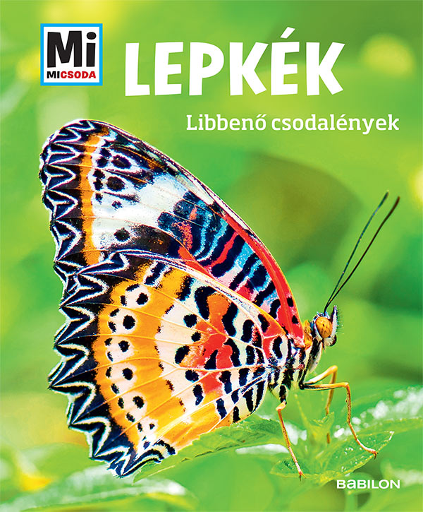 Lepkék - Mi MICSODA