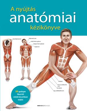 A nyújtás anatómiai kézikönyve