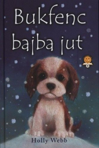 Bukfenc bajba jut - Holly Webb |