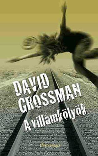 A villámkölyök - David Grossman pdf epub