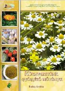 Környezetünk gyógyító növényei - Buday Andrea pdf epub