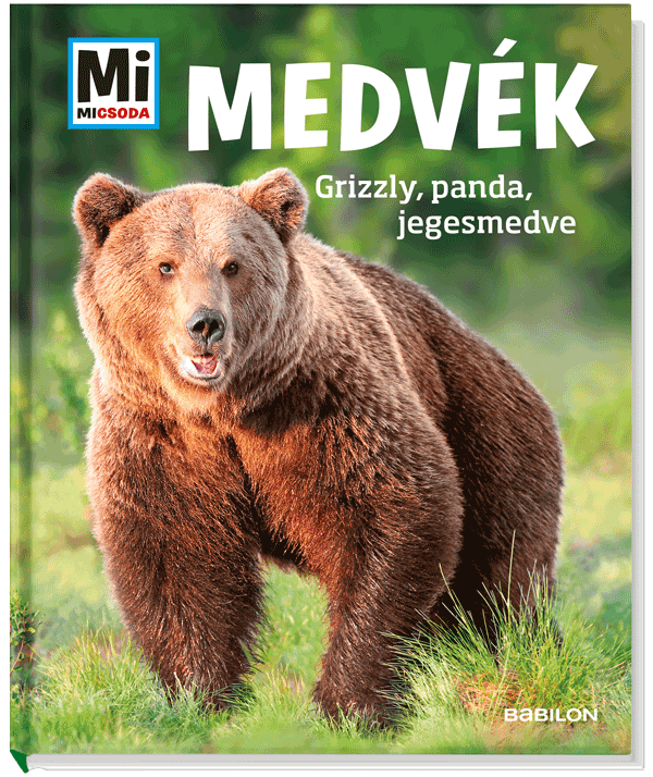 Medvék - Mi MICSODA