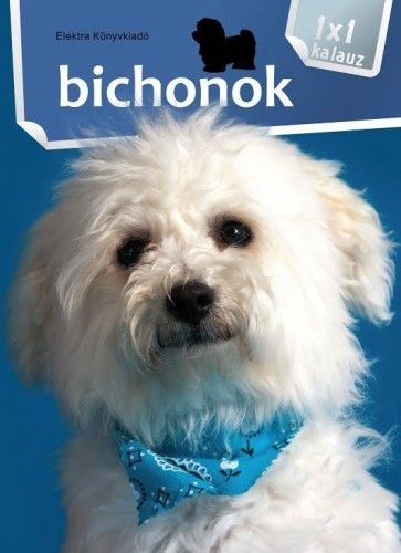 Bichonok