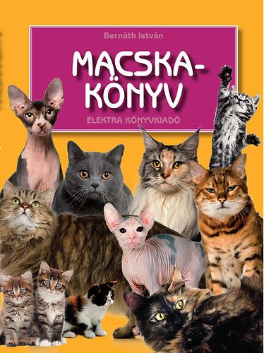 Bernáth István - Macskakönyv