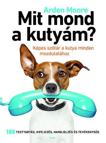 Mit mond a kutyám?