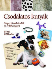 Csodálatos kutyák - Alapvető tudnivalók és érdekességek
