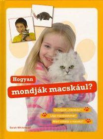 Hogyan mondják macskául?