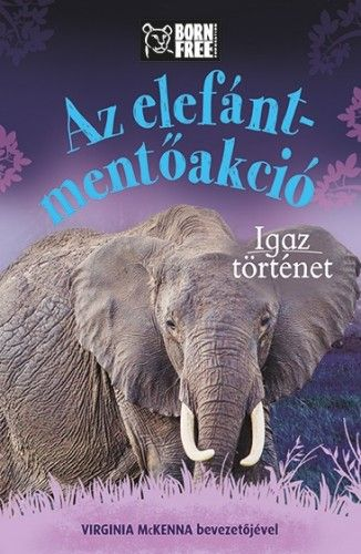 Az elefánt-mentőakció