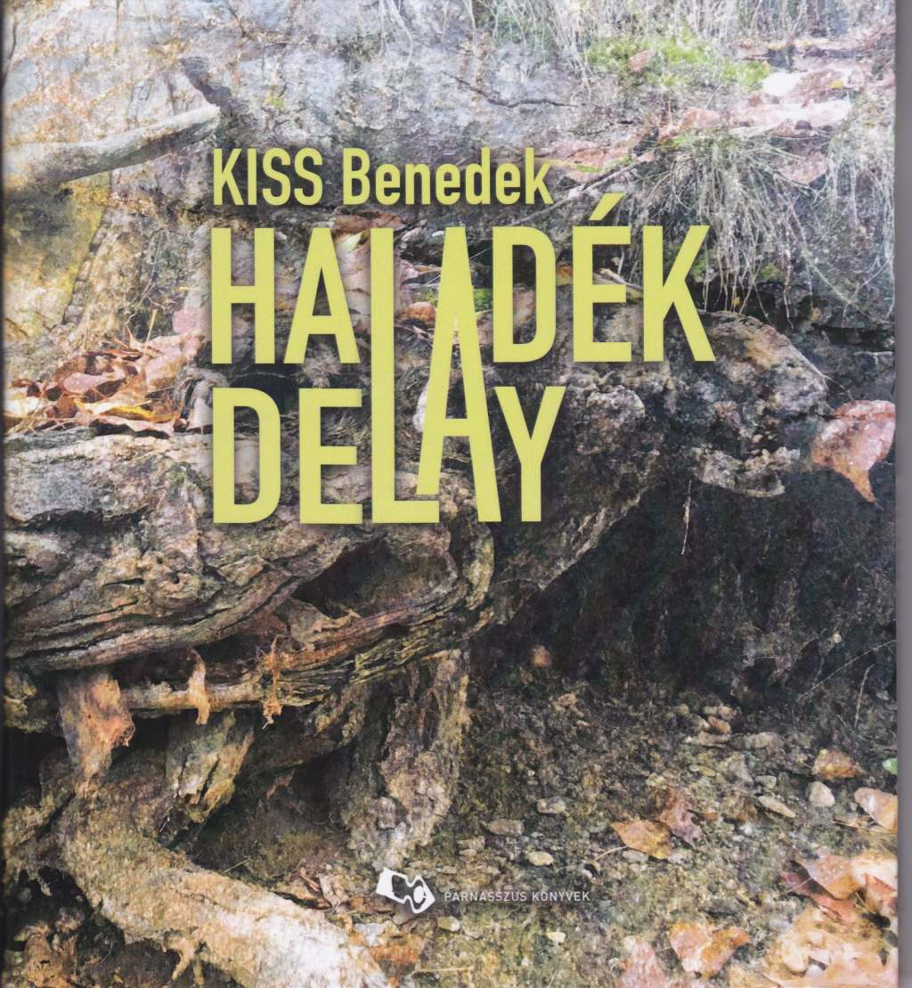 Haladék - Delay