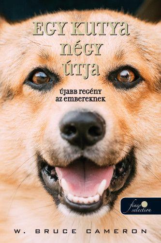 Egy kutya négy  útja - újabb regény az embereknek