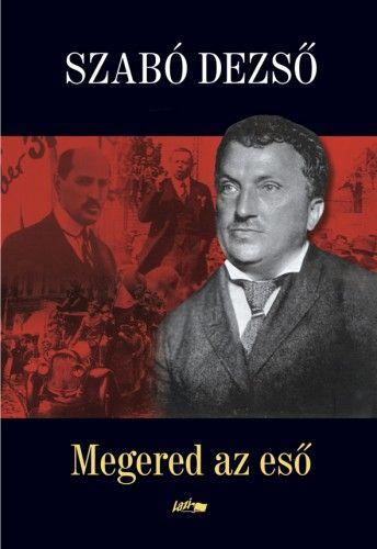 Megered az eső - Szabó Dezső pdf epub