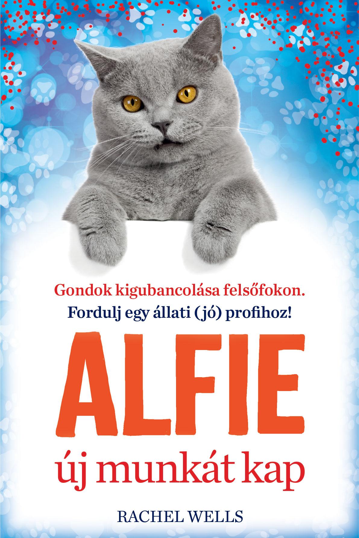 Alfie új munkát kap – Tanulj önismeretet egy bölcs cicától!