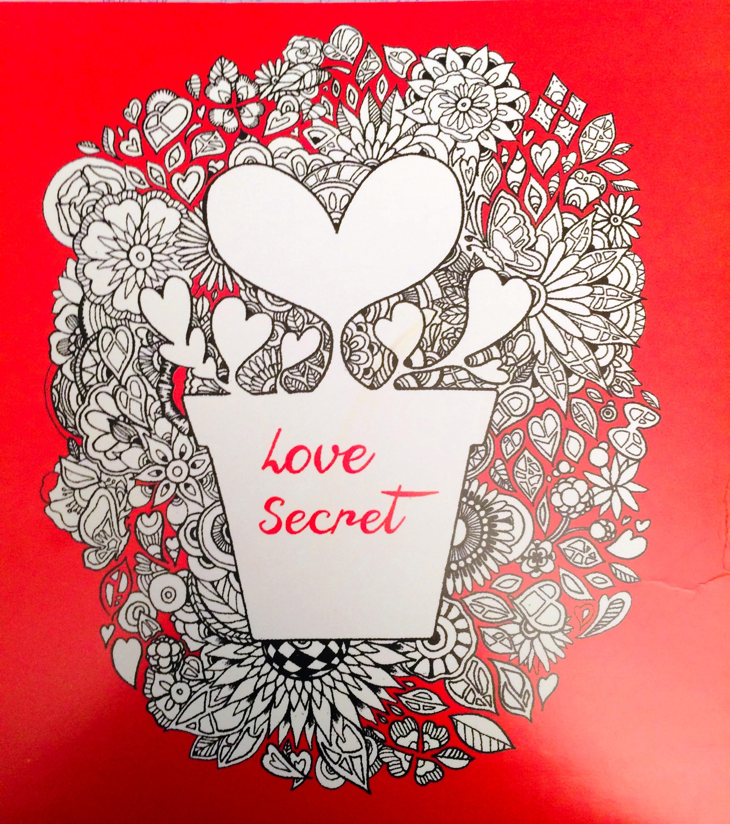 Love Secret -  pdf epub