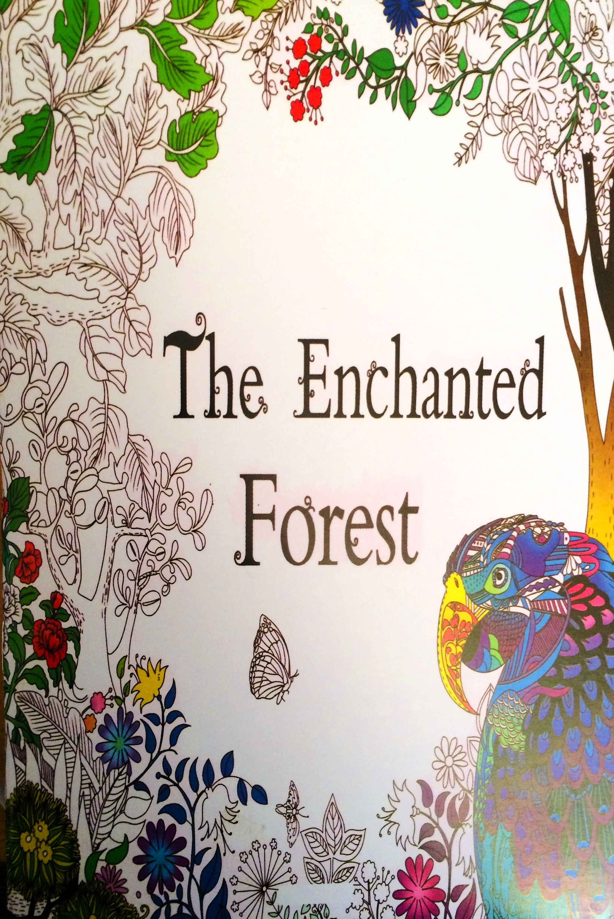 The Enchanted Forest -  pdf epub