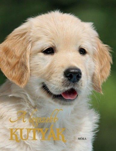 A legszebb kutyák - 2. kiadás