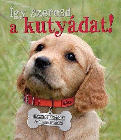 Így szeresd a kutyádat! - Honor Head pdf epub