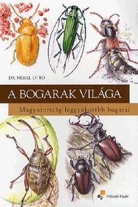 A bogarak világa Magyarország leggyakoribb bogarai