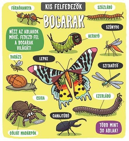 Kis felfedezők - Bogarak