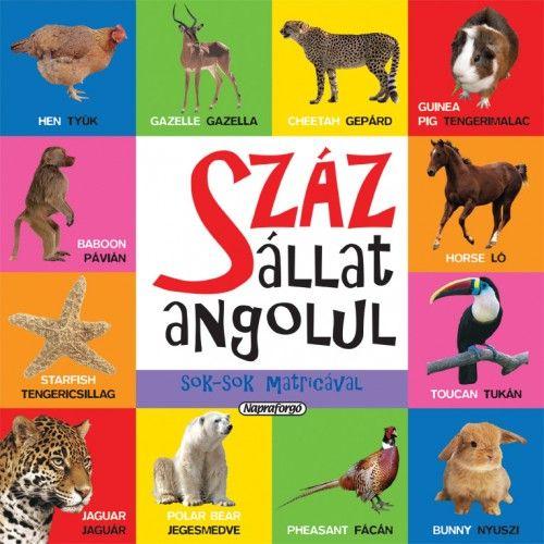 Száz állat angolul sok-sok matricával