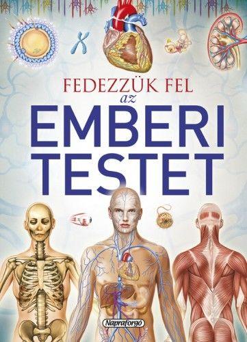 Tudástár - Fedezzük fel az emberi testet - Jordi Vigué pdf epub