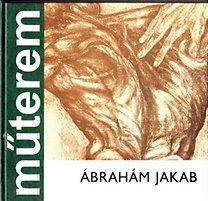 Ábrahám Jakab - Banner Zoltán pdf epub