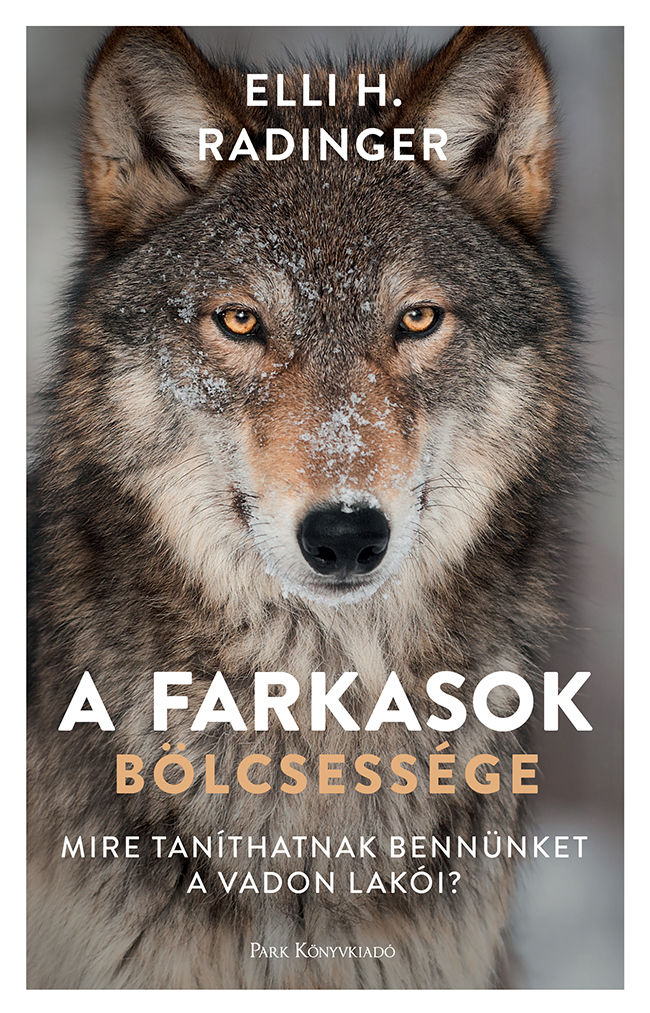 A farkasok bölcsessége