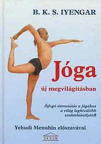 Jóga új megvilágításban - Sheena Iyengar pdf epub