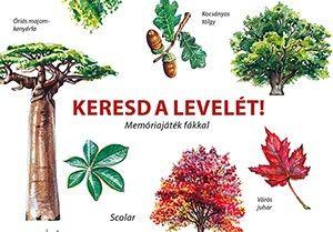Keresd a levelét! - Memóriajáték fákkal -  pdf epub