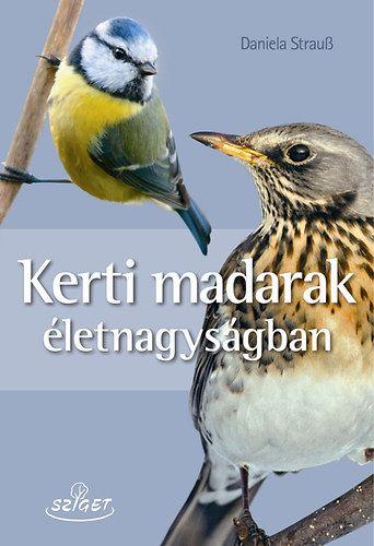 Kerti madarak életnagyságban - Daniela Strauss |
