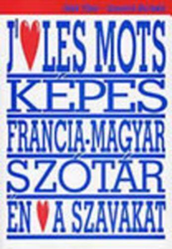 Képes francia-magyar szótár