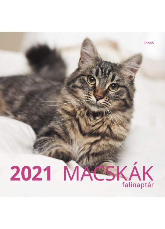 Macskák falinaptár - 2021
