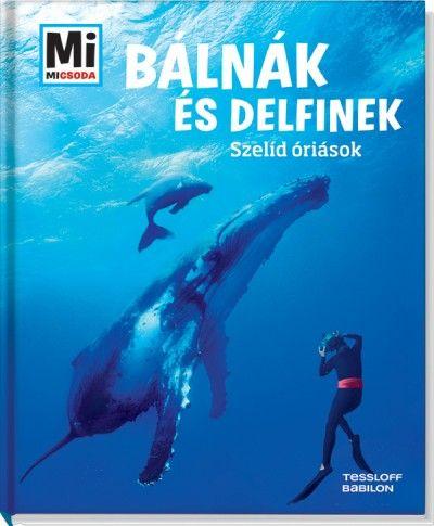 Bálnák és delfinek - Martin Kaluza |