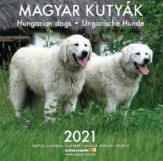 Magyar Kutyák naptár 2021