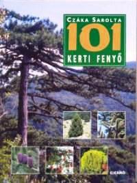 101 kerti fenyő