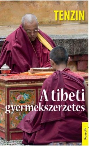 A tibeti gyermekszerzetes - Tenzin pdf epub