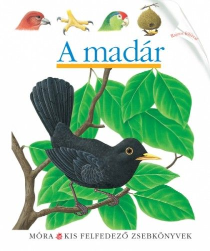 A madár - ClaudeDelafosse pdf epub