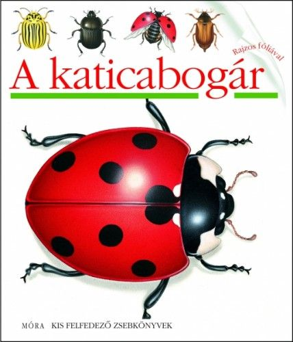 A katicabogár - Pascale deBourgoing pdf epub