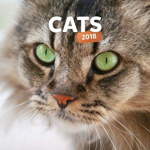Cats 2018 - Naptár