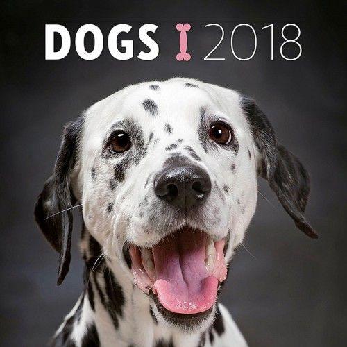 Dogs 2018 - Naptár