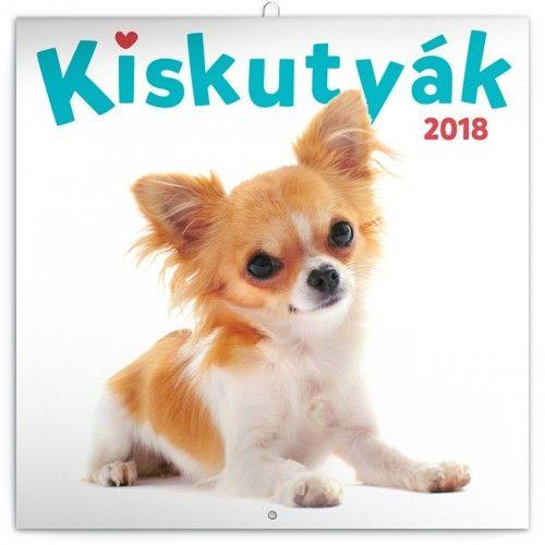 Puppies - Kiskutyák 2018 - Naptár