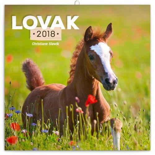 Horses – Lovak 2018 - Naptár