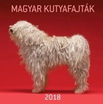 Magyar kutyafajták - Naptár 2018