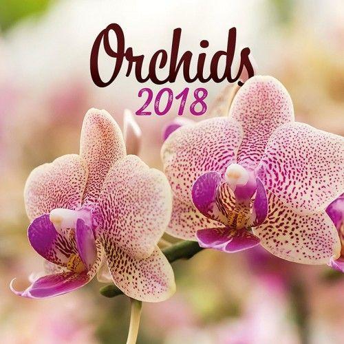 Orchids 2018 - Naptár