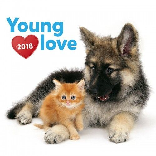 Young Love – Kittens & Puppies 2018 - Naptár