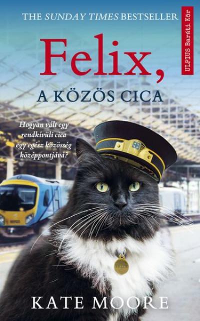 Felix, a közös cica
